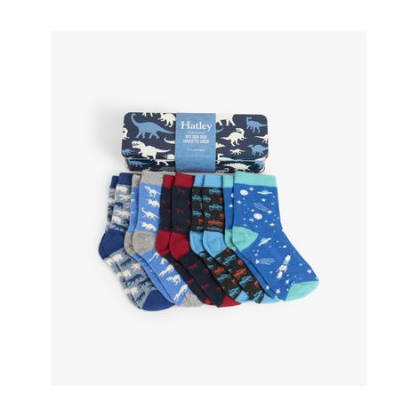 Pack regalo 5 calcetines niño en lata DINOSAURIOS